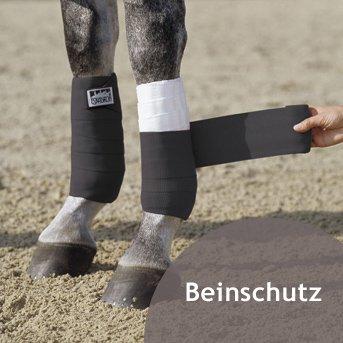 Pferd wird Beinschutz angelegt